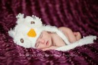 Kasper Snow Owl
