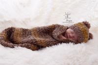 Bear Cocoon