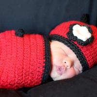 Ladybug cocoon